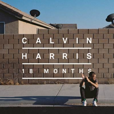 Calvin Harris - Drinking From The Bottle (Sania Pooshok Remix)