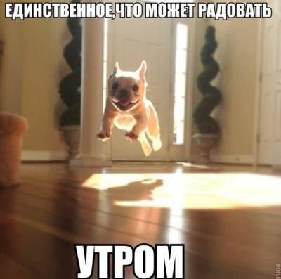 Евгений Гор Волоколамские Колокола